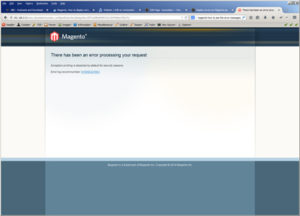 MagentoThere-has-been-an-error-processing-your-request